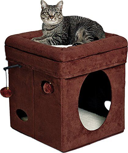 MidWest Curious Cat Cube  $18 at Amazon online deal